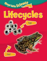 Ways into science - Life cycles
