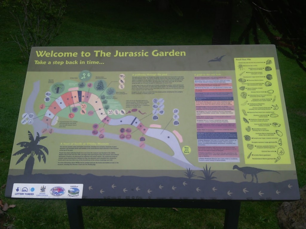 The Jurassic garden is situated in Pannett Park