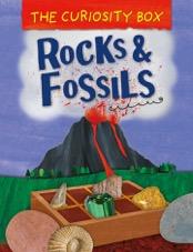 Curiosity Box : Rocks and Fossils